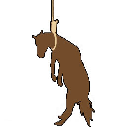 Hung Like a Horse Spray